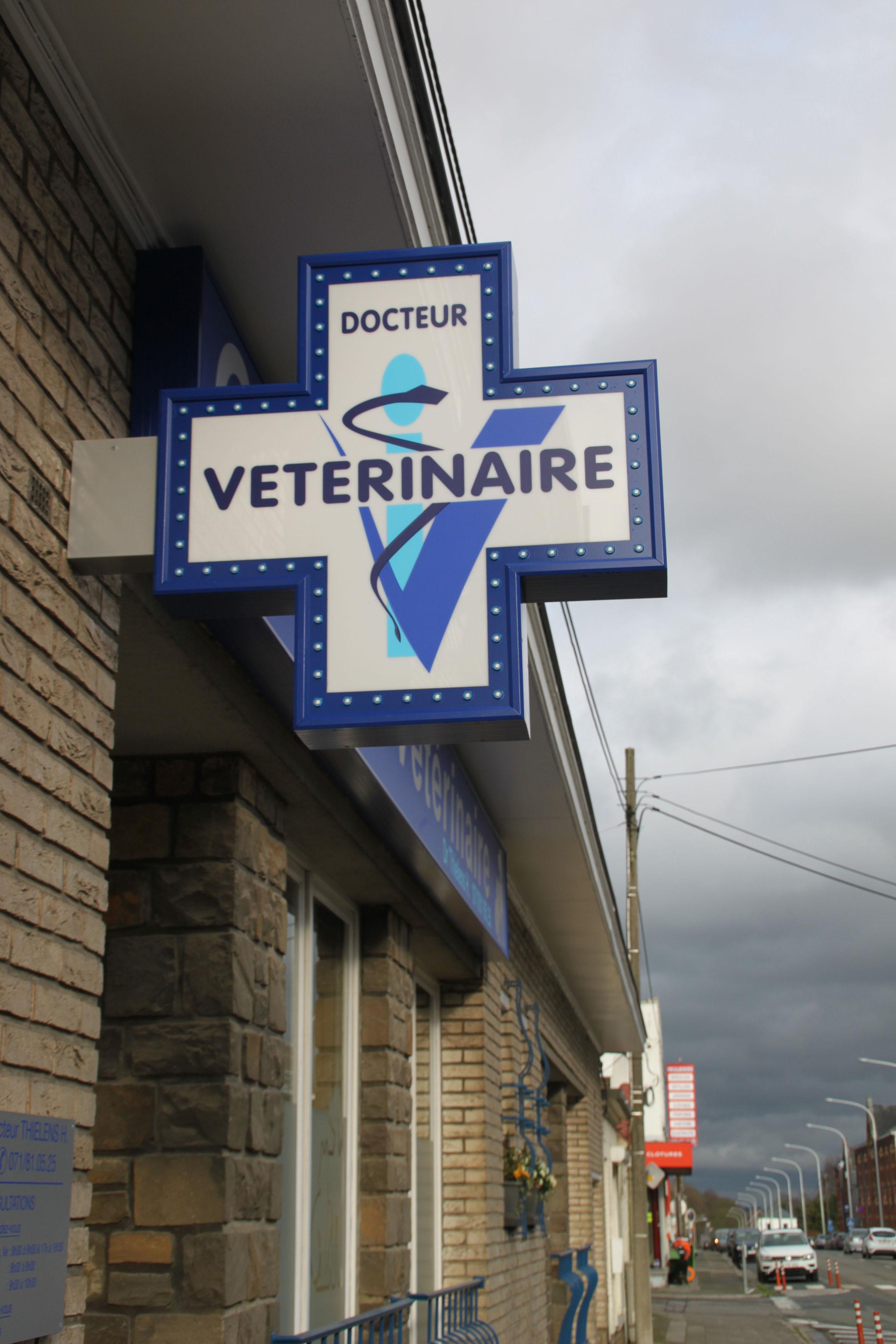 Enseigne et croix de pharmacie vétérinaire