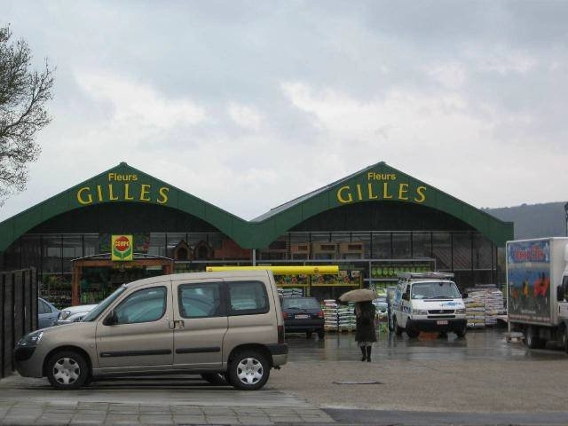 Fleurs Gilles