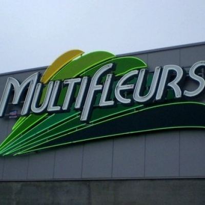 Multifleurs