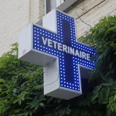 Enseigne et croix de pharmacie Vétérinaire Anhée